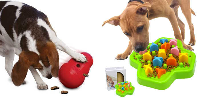 Juguetes para perros -blog -gosygat